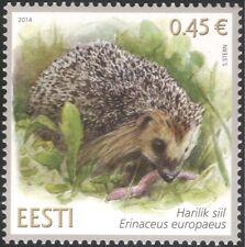 Estonia 2014 Hedgehog/Animals/Wildlife/Nature/Conservation 1v (ee1048)