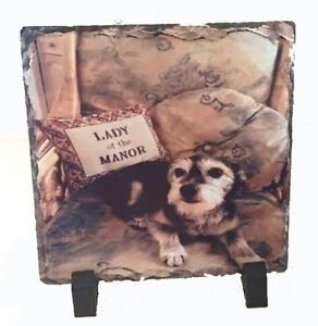 PERSONALISED PHOTO SLATE FOR PETS DOG,CATS,BIRTHDAYS,CHRISTMAS  FREE P&P