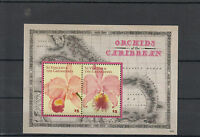 St Vincent &The Grenadines 2014 MNH Orchids of Caribbean 2v S/S II Flowers Flora