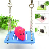 Parrot hamster small swings hangingbed shake toy suspensions house pet suppliesO