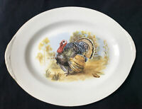 Homer Laughlin Eggshell China Nautilus Platter Oval Serving Thanksgiving Turkey