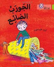 Lost Sock: Level 11 (Collins Big Cat Arabic Reading Programme), Collins Big Cat,