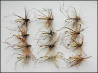 Daddy Long Legs Trout Flies, 12 Pack of Standard Daddys, Size 10/12, Fly Fishing