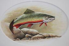 ROB STINE-PA Wildlife Realist-Original Signed WC/Gouache-Rainbow Trout Fish