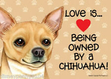 "LOVE is Being Owned by a CHIHUAHUA-Plastic Sign 5"" by 7"""