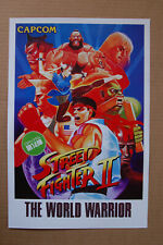 Street Fighter 2 The World Warrior Arcade Flyer Video Game promotional poster __