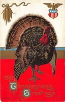 THANKSGIVING GREETINGS c1910 Embossed Postcard Patriotic Turkey Eagle Shield