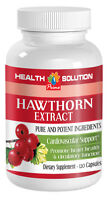 Blood Pressure Supplement HAWTHORN BERRY Extract Blood Pressure Support 120 Caps