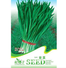 FD1345 Leek Seeds Chives Fragrant-Flowered Garlic Seeds ~1 Pack 100 Seeds~