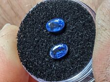 Blue kyanite X2  1.41ct Combined