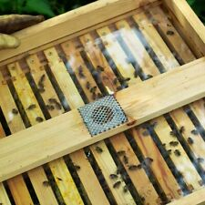 1 National Bee Hive See Through Crown board.