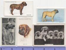 Mastiff Dog Pet Canine 5 Different Vintage Ad Trade Cards #4