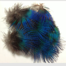 10pcs Natural Blue Peacock neck plumage feathers craft/millinery/jewelery