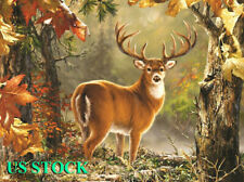 5D DIY Diamond Embroidery Painting Cross Stitch Decor Longly Deer Full Drill *1
