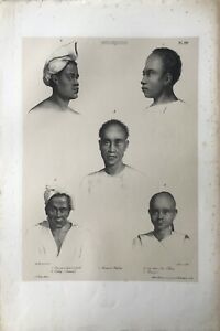 """MOLUQUES"" (INDONESIA), Portraits of Habitants, Tastu Editeur,1833."