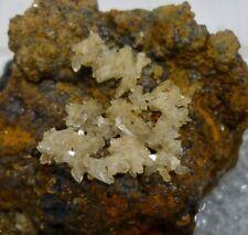 RARO Adamite CRISTALLI - color oro COLLINA, Utah, USA (E8)