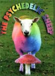 The Psychedelic Sheep
