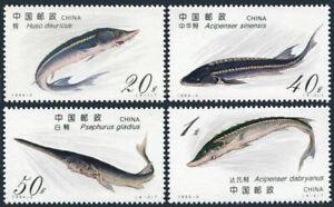 China PRC 2487-2490, MNH. Michel 2521-2524. Fish 1994. Sturgeon.