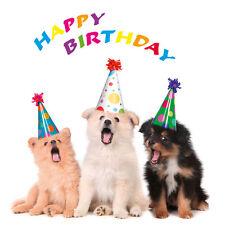 Klappkarte: drei Hunde singen ein Geburtstagslied - de luxe
