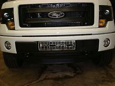 2011-2014 Ford F-150 Ecoboost bumper grille (Stainless Steel RAPTOR DESIGN)