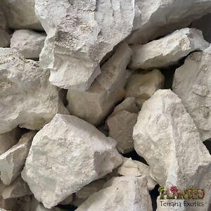 Natural Lump Chalk Calcium For Tortoises 1kg - Reptiles Supplement