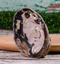 89615 Abalone Shell Smudge Bowl Kheops International