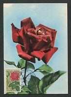 FRANCE MK 1962 FLORA ROSEN ROSE ROSES MAXIMUMKARTE CARTE MAXIMUM CARD MC d6063