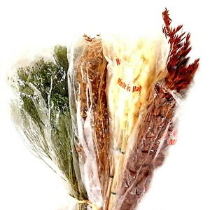 Assorted Dried, Preserved Decorative Bunches Gypso, Oat, Lagurus New Italy
