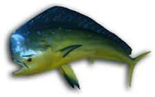 "50"" Bull Dolphin Half Fish Mount Replica (aka Mahi Mahi / Dorado)"
