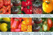 Tomatensamen 10 alte Russische Sorten Samen Set/_