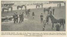 1936 Show Of The Hunters Improvement And National Light Horse Breeding Society