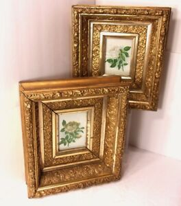 Antique 1850-1899 Pair Gold Gilding Gesso Wooden Picture Framed Roses Shadow Box