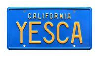 Cheech & Chong Up in Smoke | Fiberweed Van | YESCA | STAMPED Prop License Plate