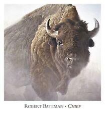 Chief by Robert Bateman Buffalo Print 26x28