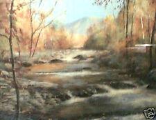 Chandler, Terry; Little Pigeon River - landscape