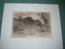 "An etching by 19th century artist, Geo. H. Smille, ""An Old New England Orchard"""