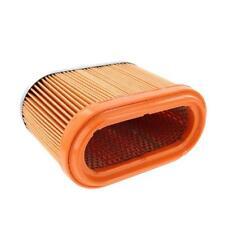 Generac 0D9723 OEM RV Guardian Generator Air Filter - Air-Cleaner Element (PWY)