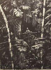 """GERARD Barthélémy monté Ltd Ed Originale Lithographie, 18 x 14"""" MAEGHT 1986 N0415"""