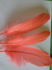 """Goose Satinettes 25 Feathers 6-8"""" MIX or Choose Color ADD'L ship FREE Quills"""