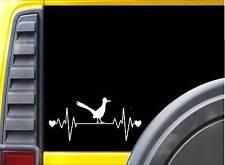 Roadrunner Lifeline Bird K316 8 inch decal heartbeat sticker