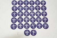 Set of 32 Cub Scout Purple World Crest Fleur De Lis Patch
