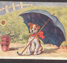 """WAIN DOG,""""HIS SUMMER HOLIDAY"""" UMBRELLA,OLD,POSTCARD"""