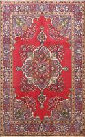 Vintage Traditional Floral Oriental Medallion Hand-Knotted Area Rug 6x10 Carpet
