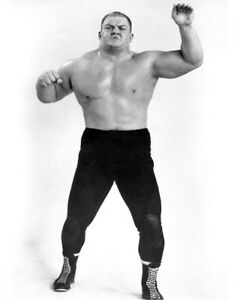 Pro Wrestler DICK THE BRUISER 8x10 Photo Wrestling Champion Print AWA Poster