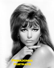 CLAUDIA CARDINALE 8X10 Lab Photo Portrait Sexy 1960s English Actress Babe