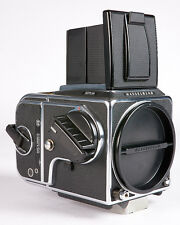 Hasselblad 501CM with A12 Film Back *7800*