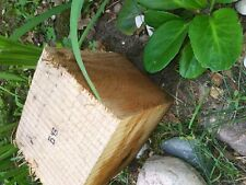 B43 Hickory Wood Turning Blank Bowl Carving Block Woodwork 7.5x7x6 Inches