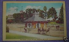 CAMELS IN DRUID HILL PARK BALTIMORE MD POSTCARD 1946