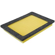 A35528 air filter Ford F150, 250, 350, Expedition, Lincoln, 5.4L