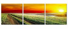 MEADOW SUNSET COLORS, Triptych Wall Art Canvas Vinyl Wraps, Set Of 3 panels